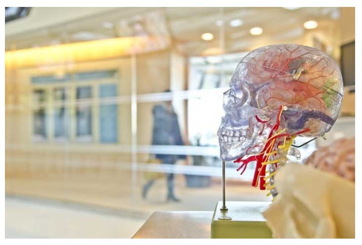 Resolving Cancer Related Cognitive Impairment - Repairing the Blood Brain Barrier